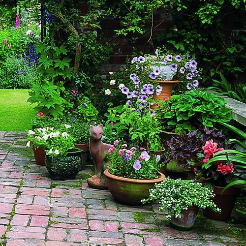 beautiful garden inspiration