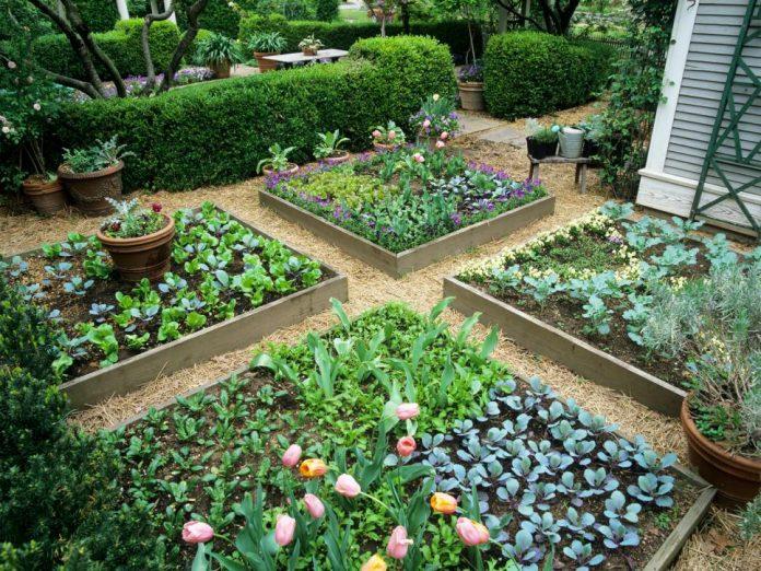 garden bed decoration