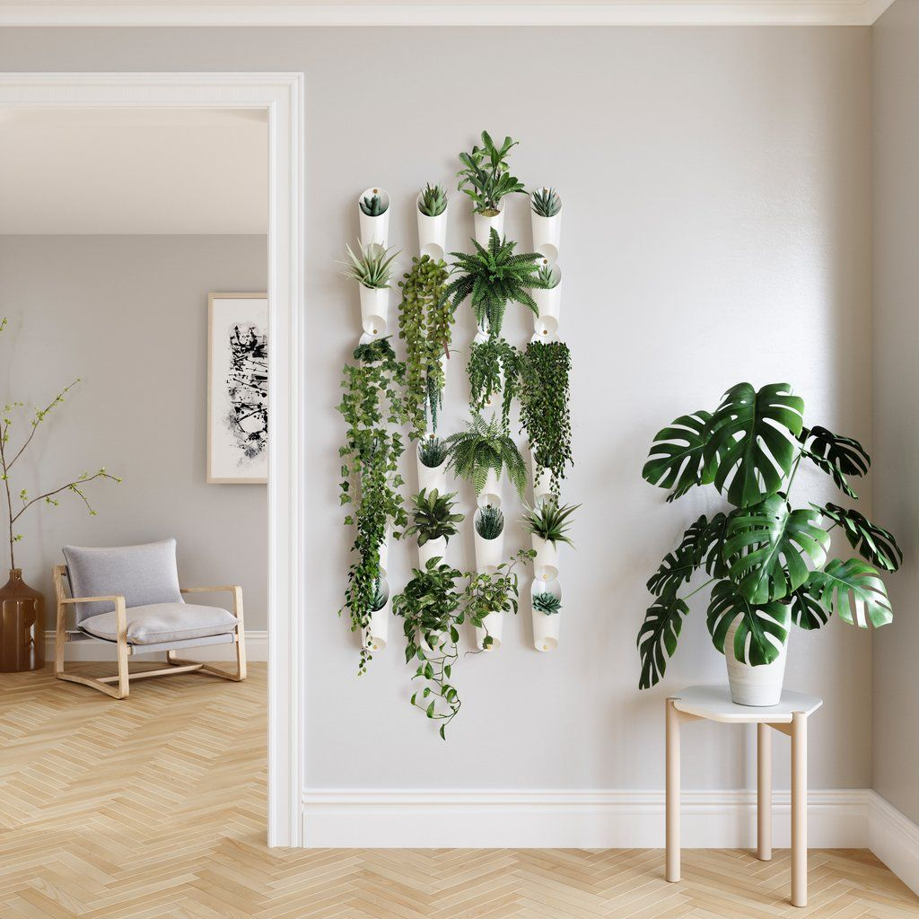 A Mini Garden in The Corner of Your Room