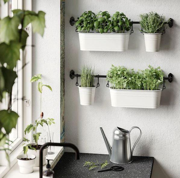Beautiful Minimalist Hanging Gardens