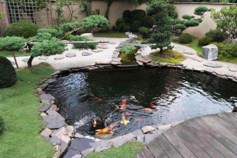 Backyard Garden Fish Pond