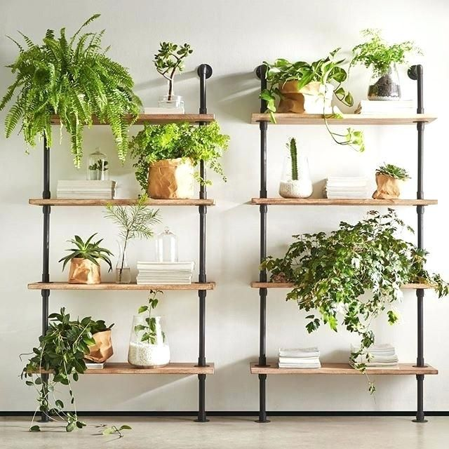Vertical Ornamental Plant Rack