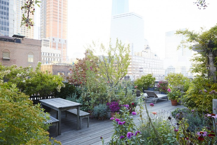 Rooftop Garden With Two Areas
