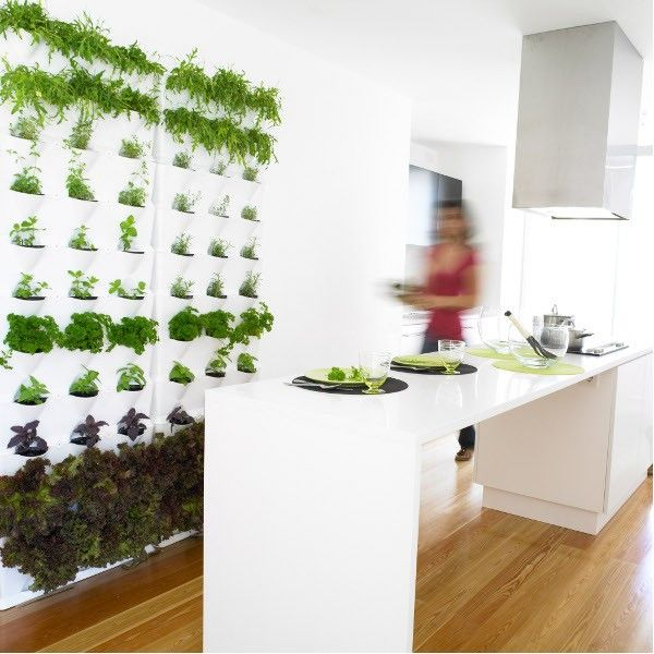 Vertical Mini Garden