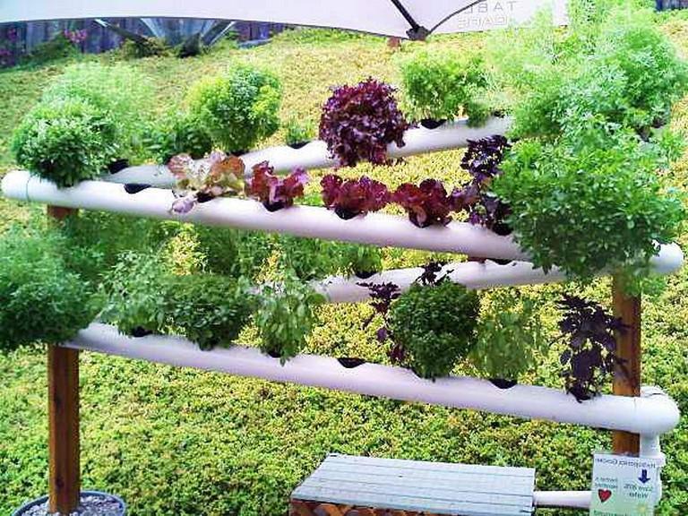 Simple Vertical Garden
