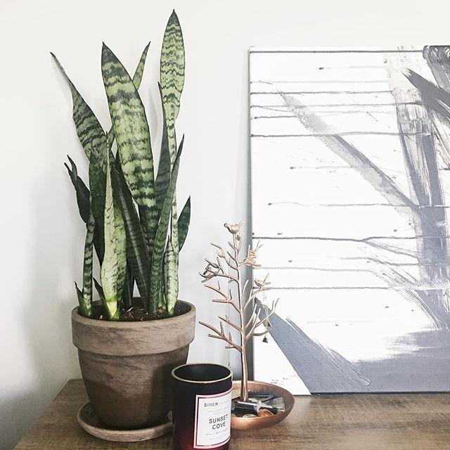 Create a Natural Corner