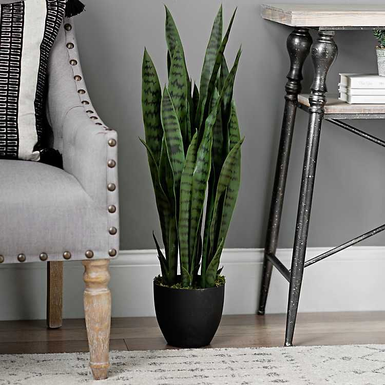 Create a Masculine Impression in Your Living Room