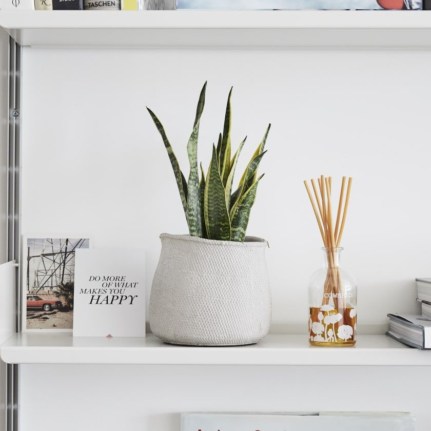 Decorate Your Bookshelf to Invigorate The Bedroom