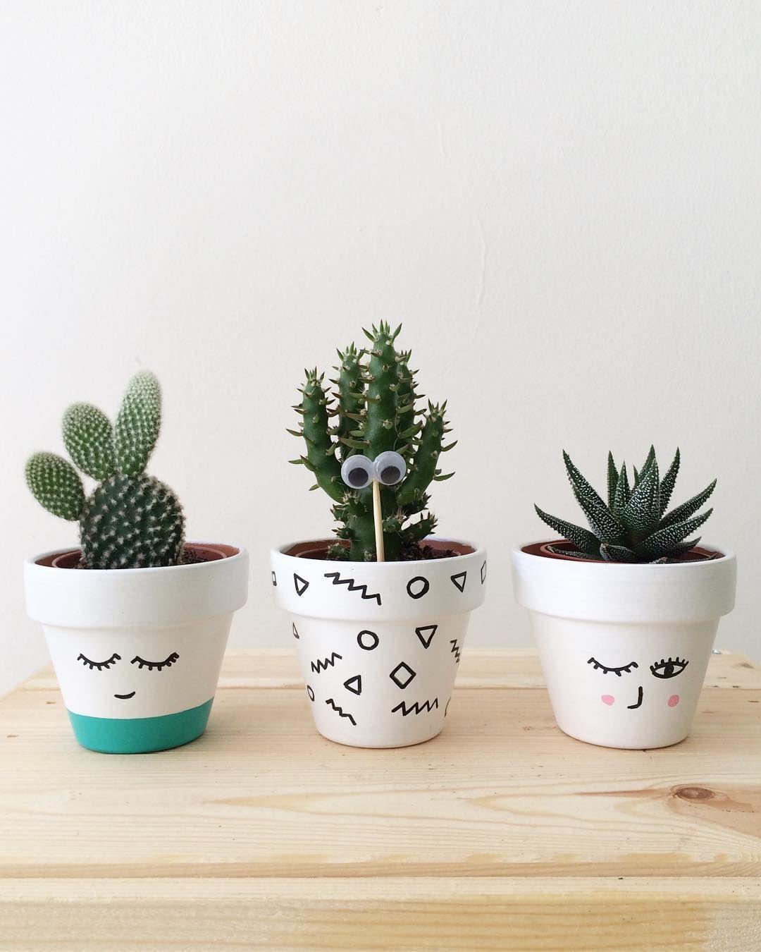 Plant Your Cactus