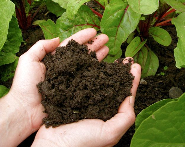 Preparations for Revitalize The Old Soil