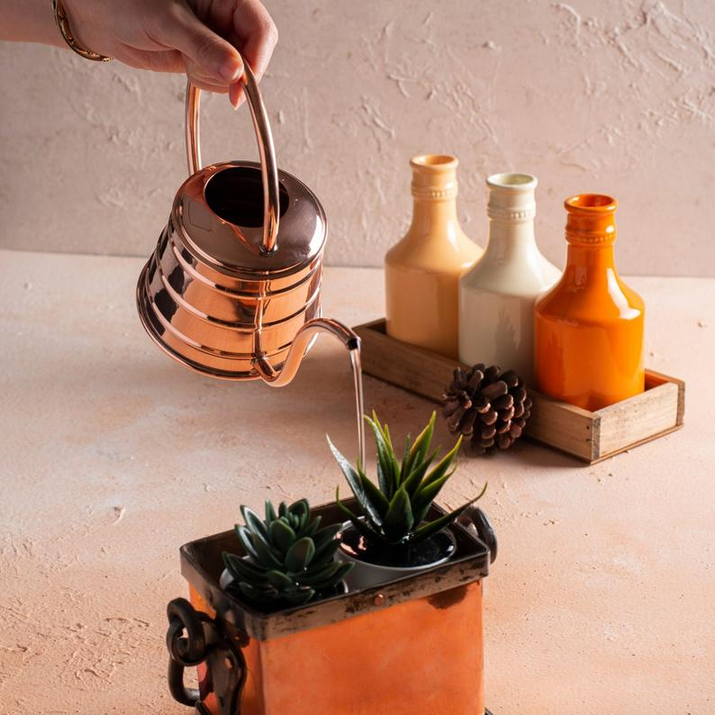 The Right Watering Can