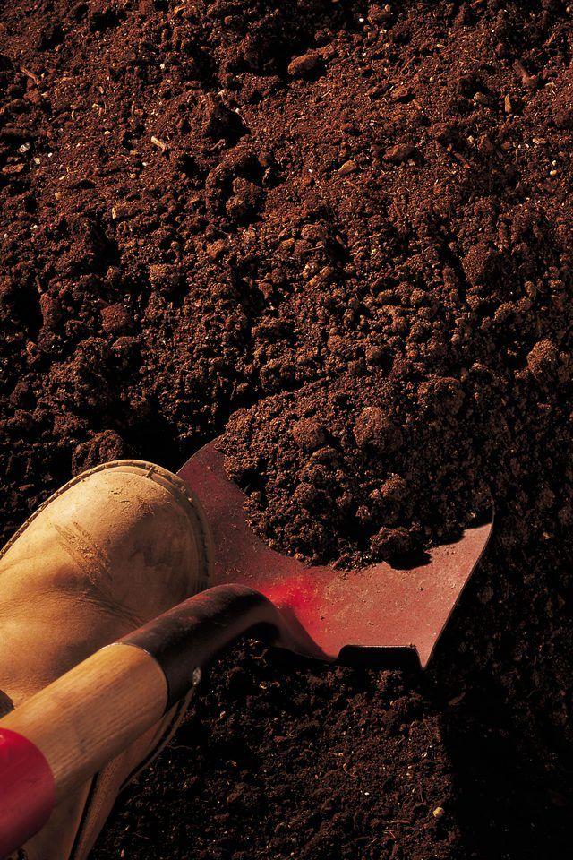 Not Preparing The Soil
