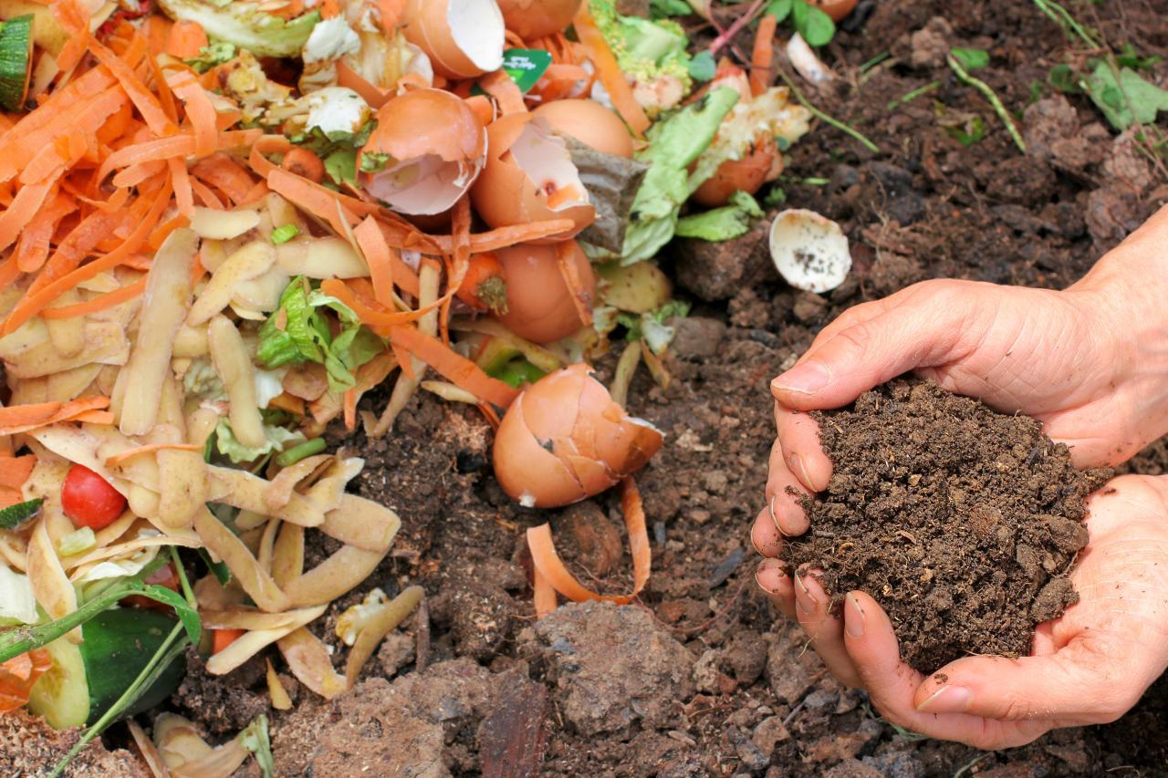 Add Some Organic Fertilizer
