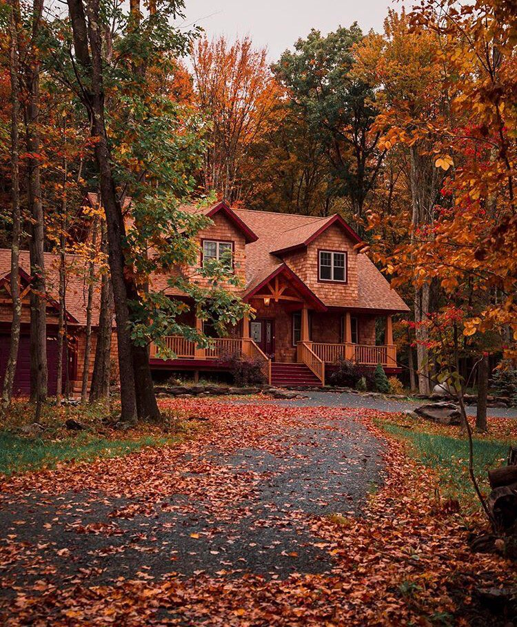 Take the Fall Leaves from Your Front Yard and Backyard