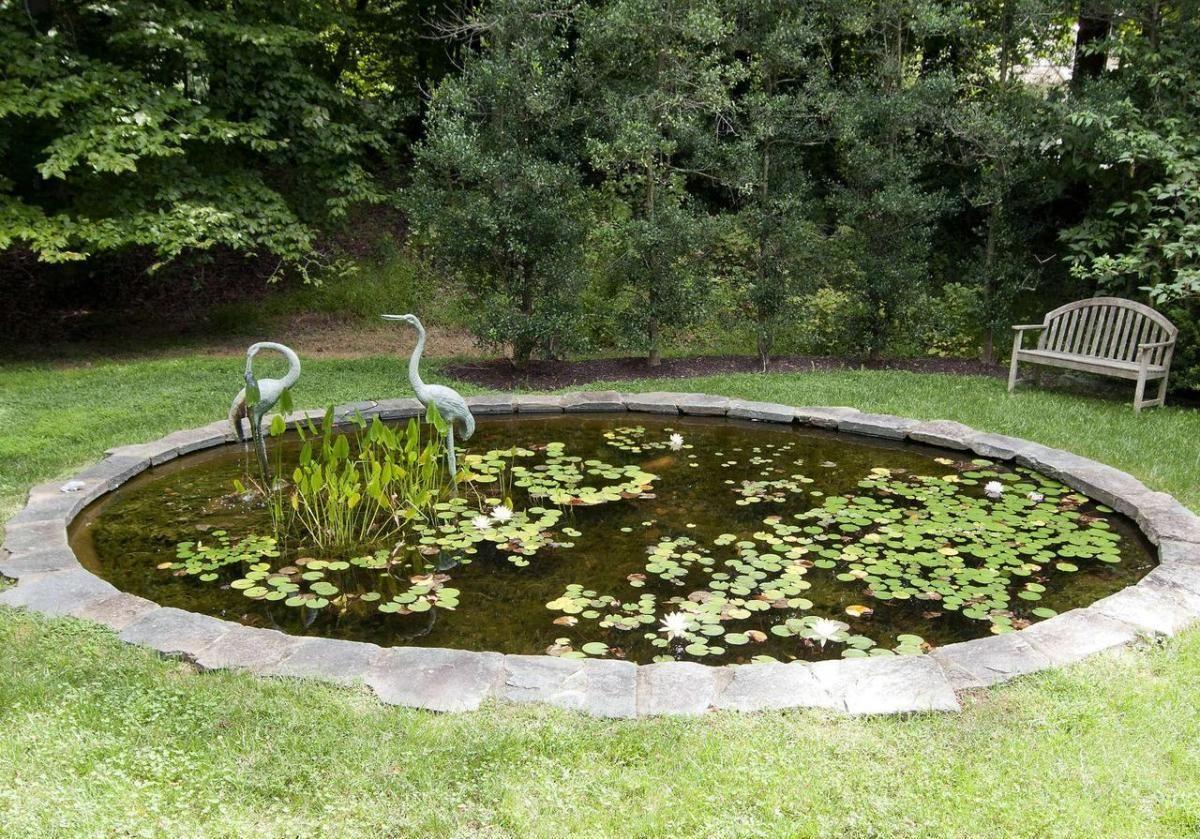 Circle Fish Pond