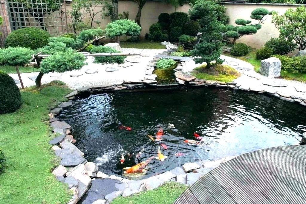 Fish Pond with Garden