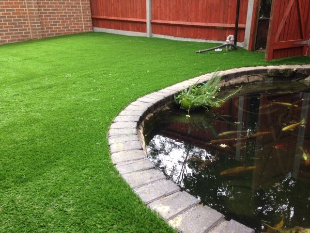 Fish Pond with Grass