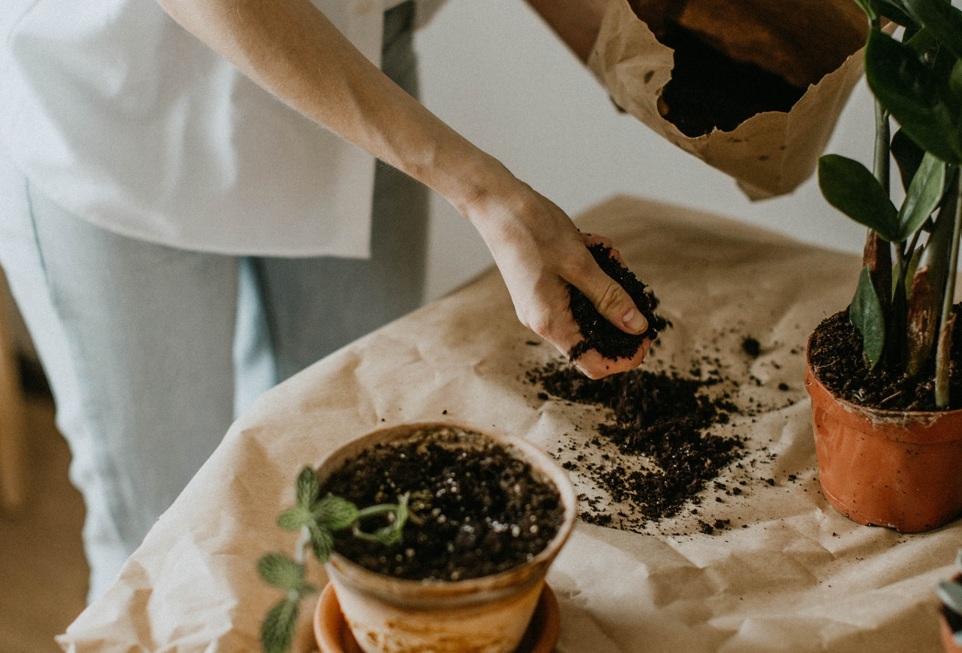 Use Organic Fertilizer