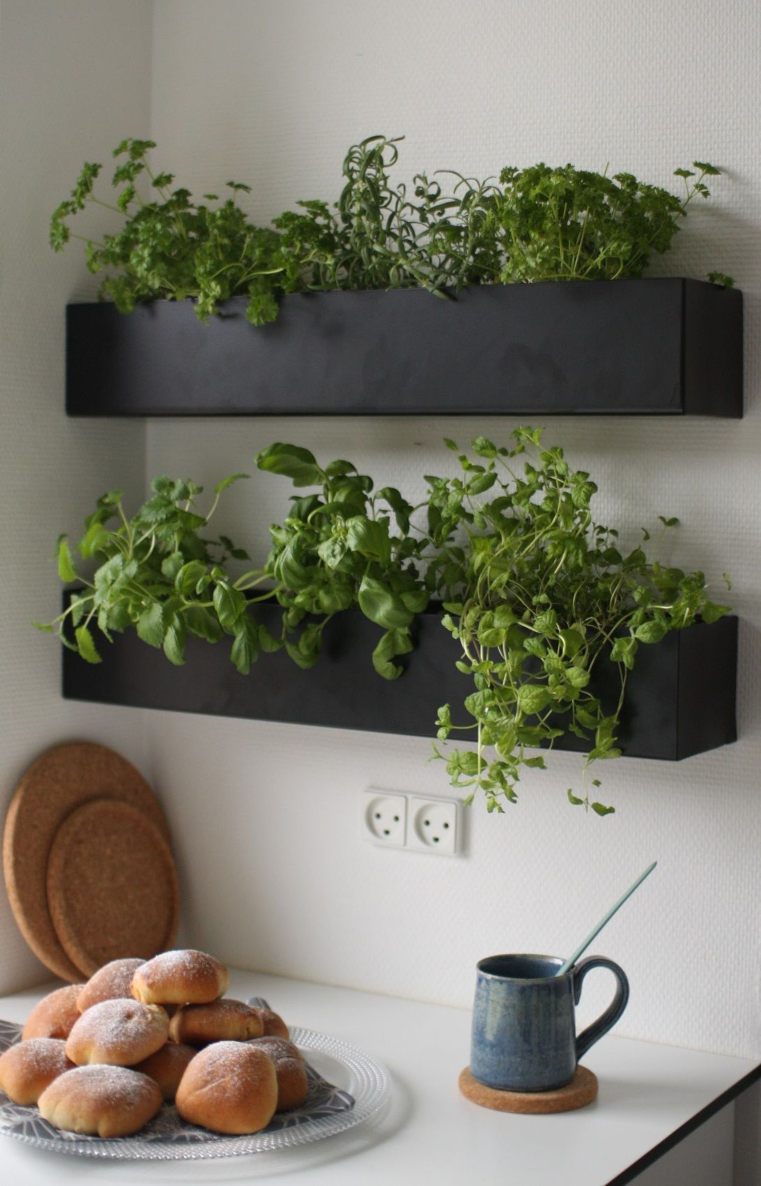 Kitchen with Mini Garden